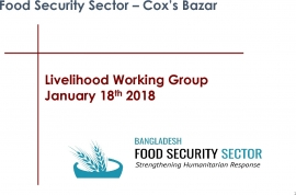 Livelihoods Working Group Meeting - Presentation PPT 18th January