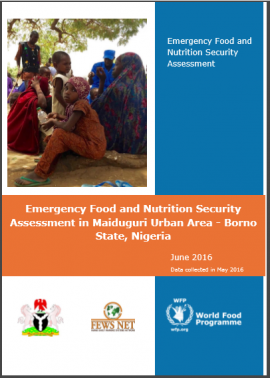 Emergency Food and Nutrition Security Assessment in Maiduguri Urban Area -  Borno State, Nigeria