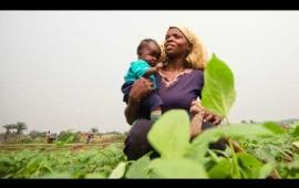 La production agricole, source d'espoir pour les déplacés de Tshikapa
